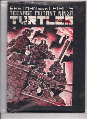 TMNT 1984 #1 SECOND Print – a